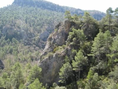 Alto Tajo - Hundido de Armallones,clubs en madrid; salir por madrid; fedme